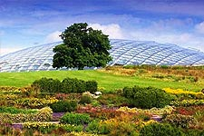 The National Botanic Garden