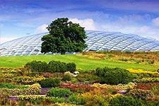 The National Botanic Garden